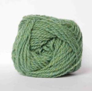 green family - FC24