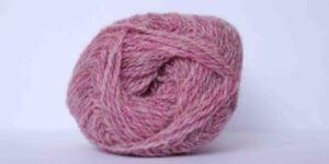 purple pink family - 1283